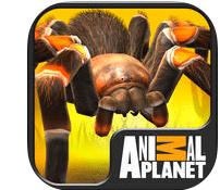 AnimalPlanetScarySpidersApp