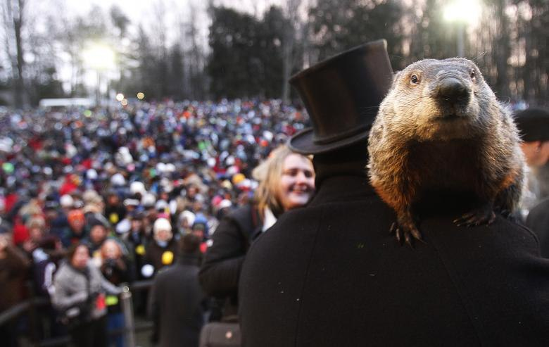 Groundhog-Day-2016_Phil