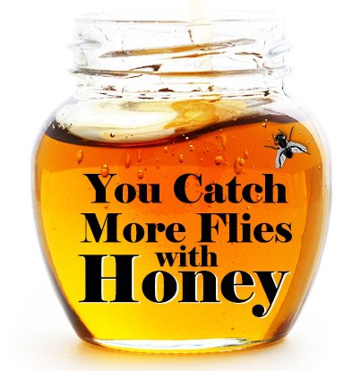 HoneyandFlies