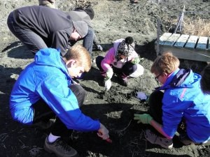 PA Virtual Family Digs for Fossils