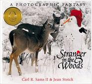 stranger-woods-cover