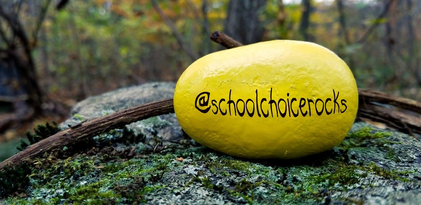 PA Virtual School Choice Campaign Goes National